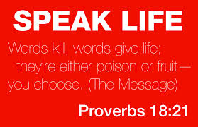 SPEAK LIFE - michelle bengtson blog pic (2 of 2)