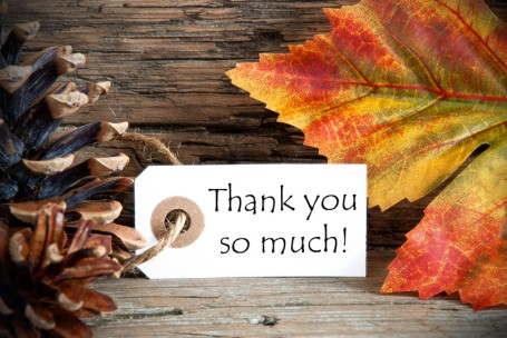 THANK YOU SO MUCH! tag with pine cone & leaf