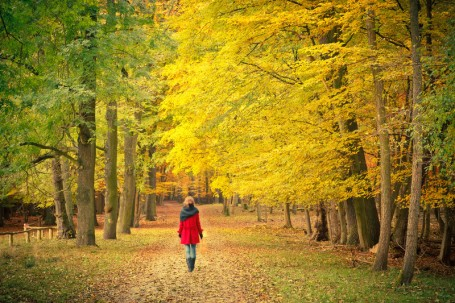 WOMAN walking on autumn path