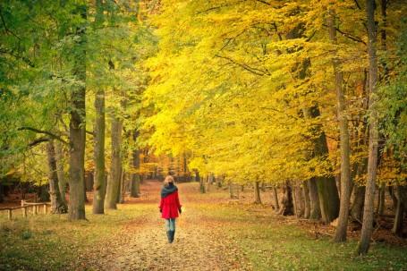 WOMAN walking on autumn path